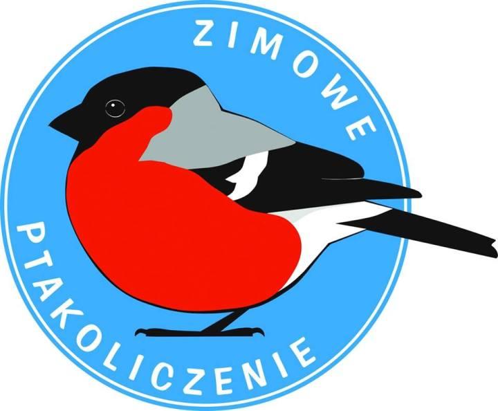 zimowe_ptakoliczenie