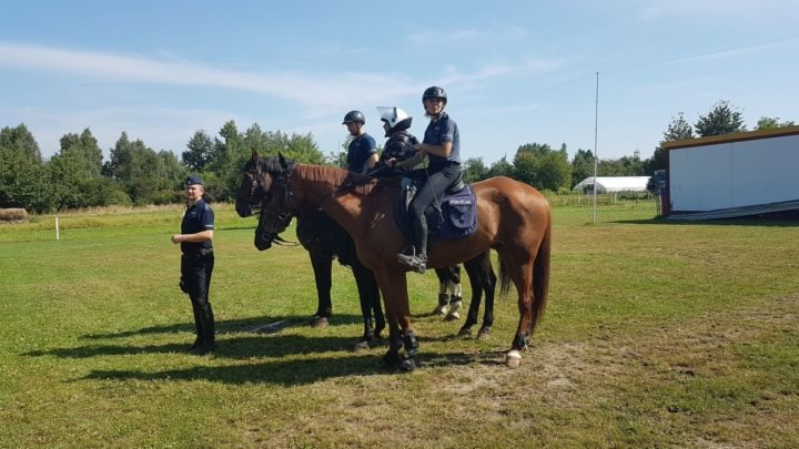 Policjanci z zespołu konnego po pierwszym egzaminie