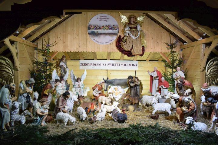 Piękne i różnorodne – częstochowskie szopki bożonarodzeniowe [ZDJĘCIA]